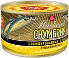 Скумбрия атл. бланшированная НДМ КТК 250 гр 1/48